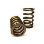 Cat Cams Valve Springs